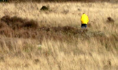 American Camp prairie