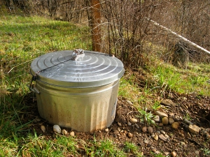 food waste is recycled in the garden
